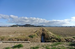 八幡山を望む約90坪に建つ家